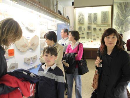 Visitatori al museo di storia naturale