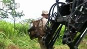 I marines collaudano il mulo-robot