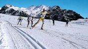 Atleti sugli sci da fondo lungo l'anello della Lessinia